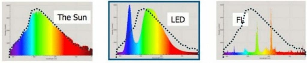 LED vs TL